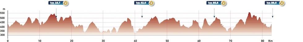 vulkanbike-eifel-marathon-profil-marathon